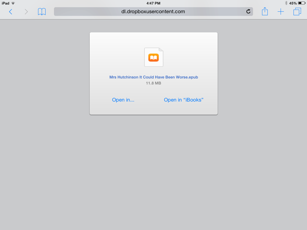 Opening ePub book on iOS device